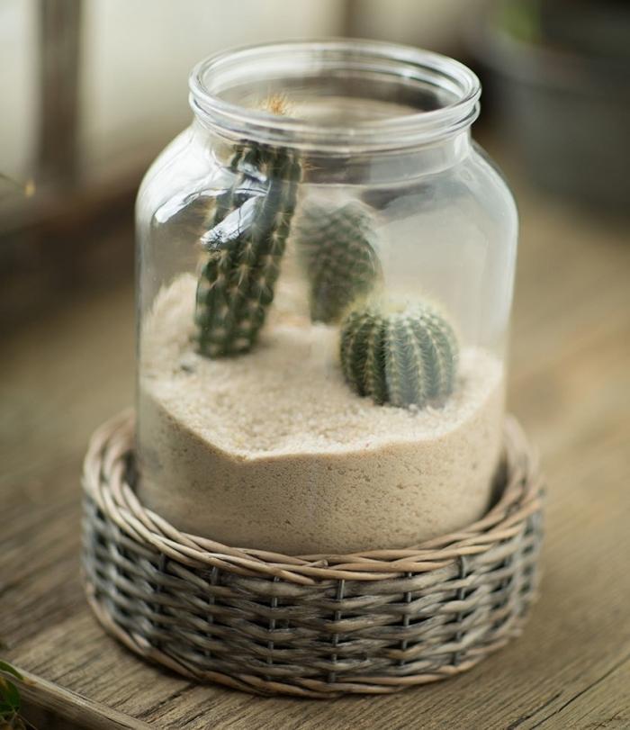 exemple de jardin de cactus avec sable et terreau plante sol sec, modèle terrarium facile dans un bocal en verre ouvert