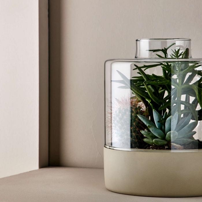 modèle de terrarium stylé et moderne dans un gros bocal en verre, idée mini jardin intérieur avec plantes vertes