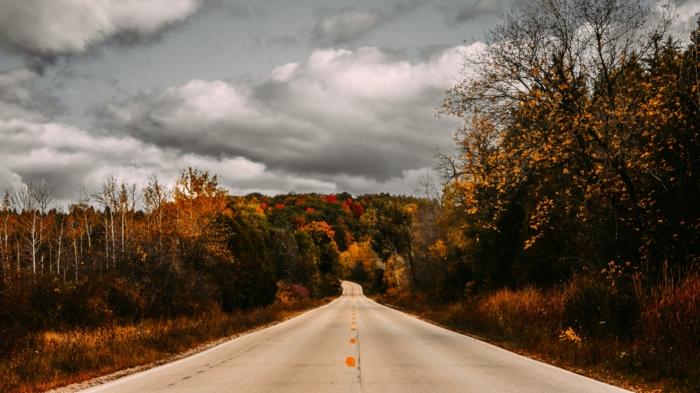un ciel pré-orageux, chemin, bois, herbes, forêts, arbres, nuages gris plomb