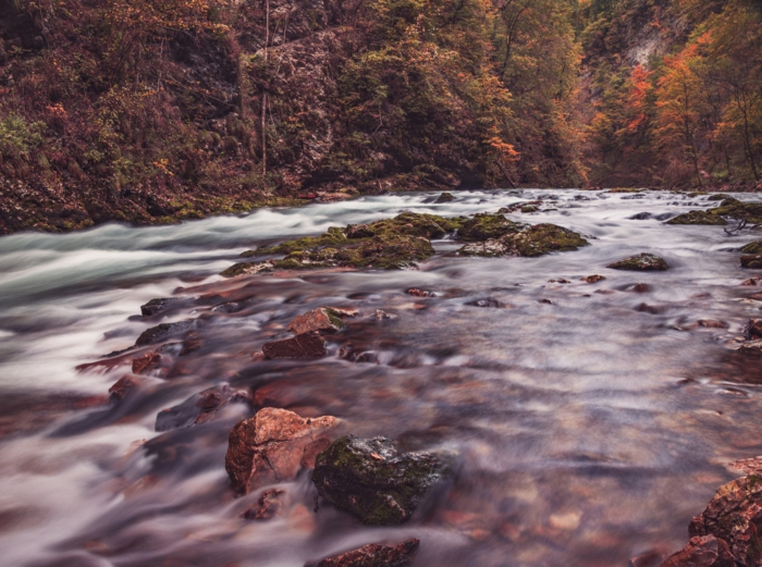rivière, forêt, roques, paysage pour fond d'écran, images d'automne pour fond d'écran