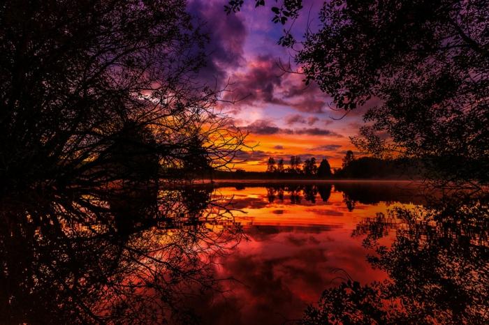 fond d'écran coucher du soleil, ciel pourpre du soleil, branches des arbres en automne