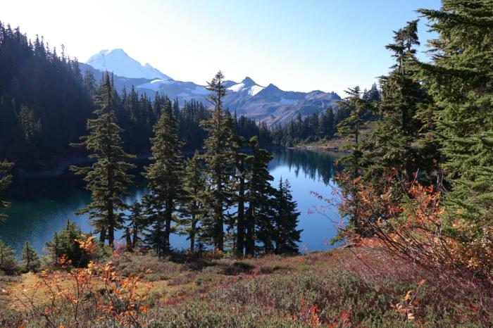 joli fond d'ecran, lac au sein de la montagne, sapins, buissons aux feuilles jaunes