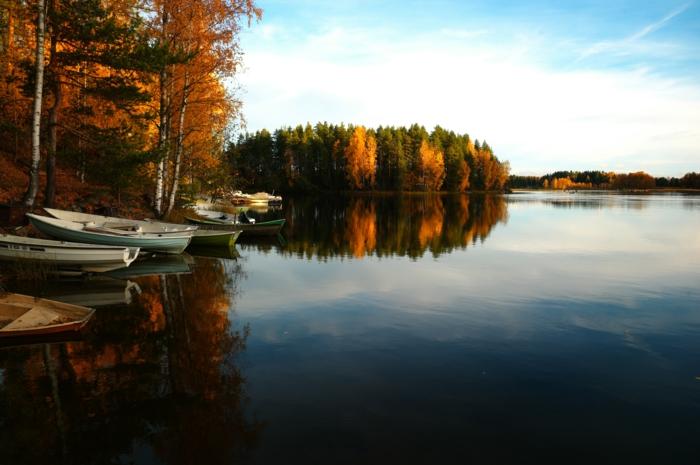 fond ecran automne, barques près de la rive, grand lac bleu, forêt de bouleau