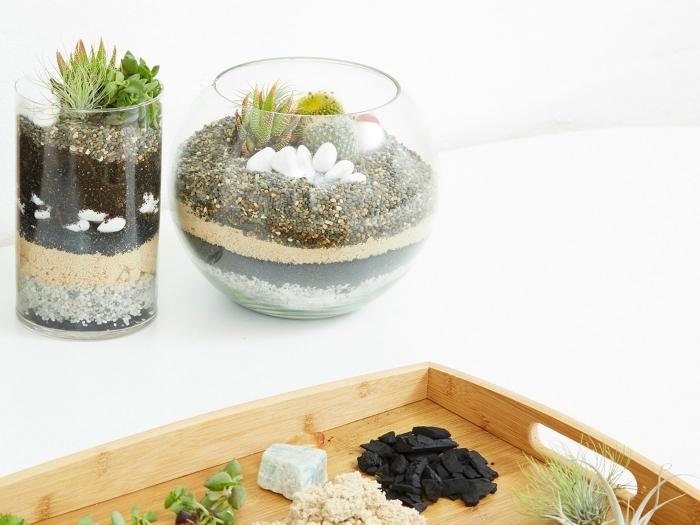 modèles de mini jardin facile à réaliser dans récipients en verre, idée terrarium ouvert pour plantes succulentes