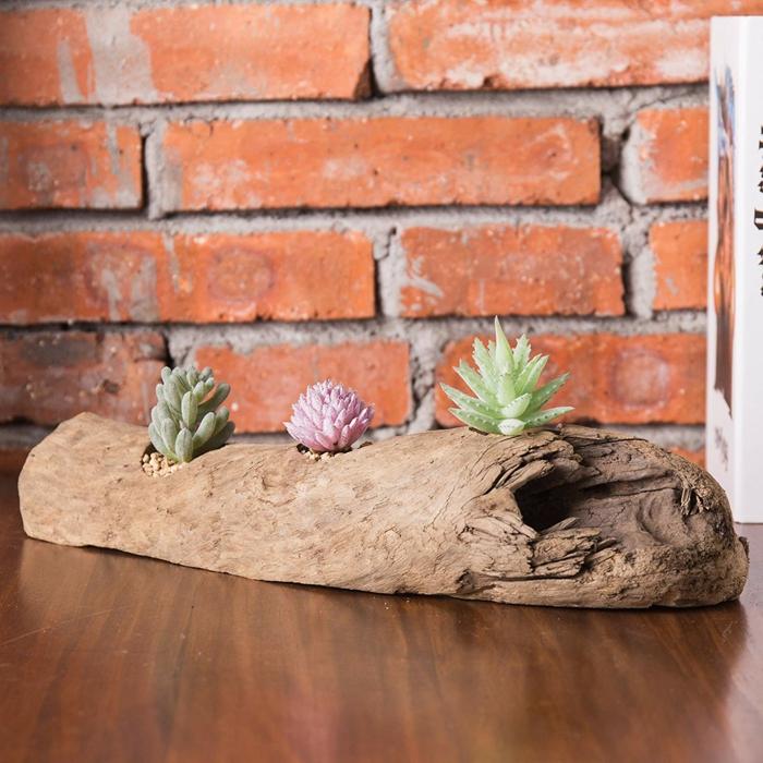 fabriquer des objets en bois flotté, un morceau de bois porté par les vagues avec petits succulents