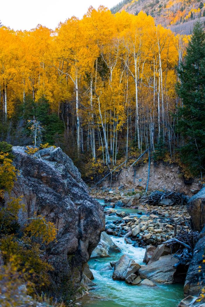 forêt de montagne, roques, rivière, colline aux arbres en couleur d'automne
