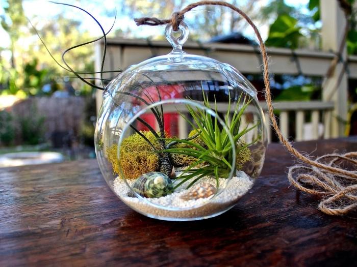 diy idée pour objet de déco avec végétaux, modèle de mini jardin suspendu dans un aquarium rond avec corde