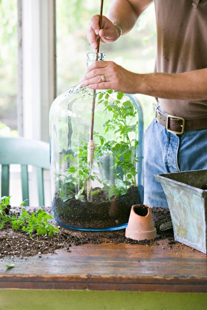 comment fabriquer un terrarium dans un gros bocal en verre, remplir un terrarium plante en bocal avec terreau