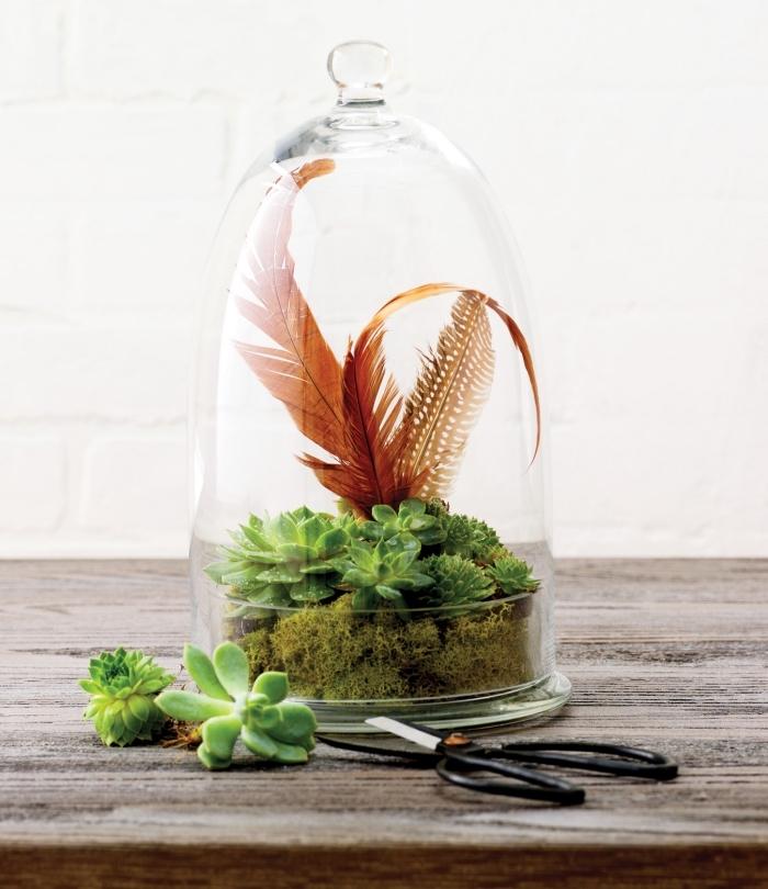 idée pour un terrarium bocal facile avec plantes humides et mousse, déco de mini jardin exotique avec plumes