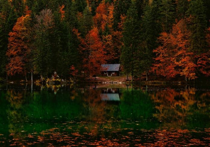 cabane dans la forêt, lac avec feuilles tombées, cabane au bord du lac, arbres plongés dans une couleur rouge