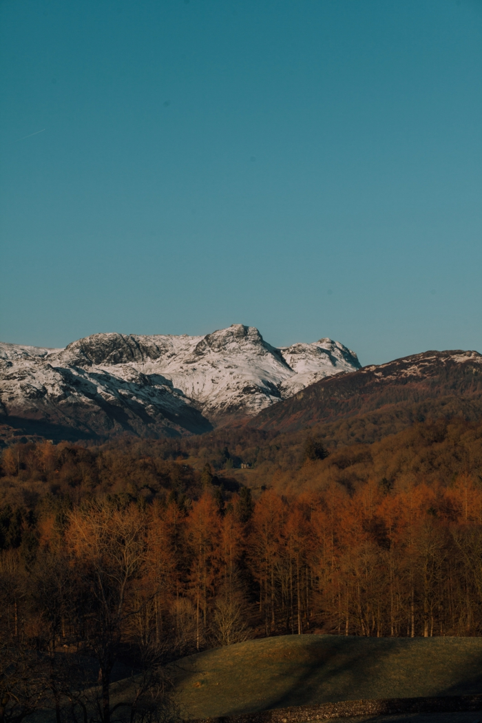 montagne, ciel, sapins en fin d'été, sommets enneigés, fond d'écran pour ordinateur gratuit
