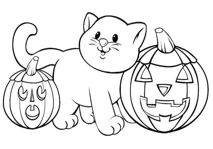 dessin pour tout petit de chaton avec citrouilles pour coloriage theme halloween