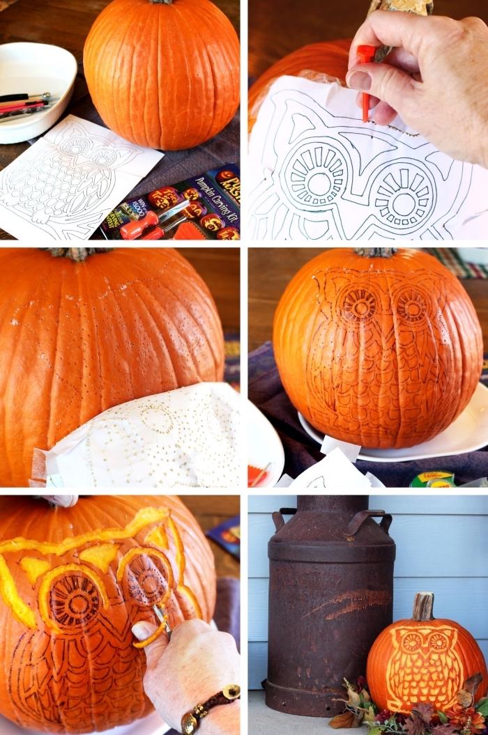 apprendre à décorer un potiron halloween, exemple comment réaliser un dessin hibou sur une grande citrouille