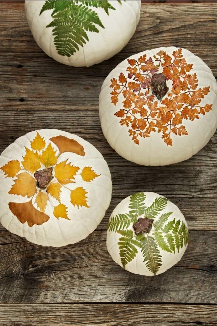 activité manuelle d'automne avec citrouille et feuilles séchées, modèle de citrouille blanche décorée avec feuilles et fleurs séchées
