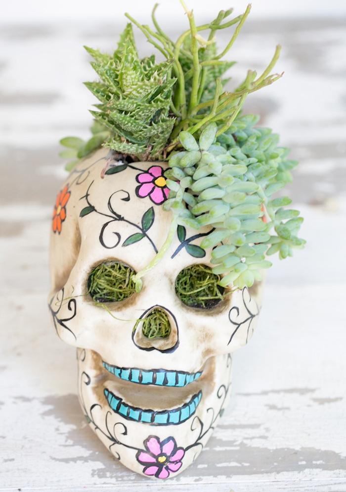 crâne à dessins tete de mort mexicaine décorée avec des plantes grasses, deco halloween fait maison originale