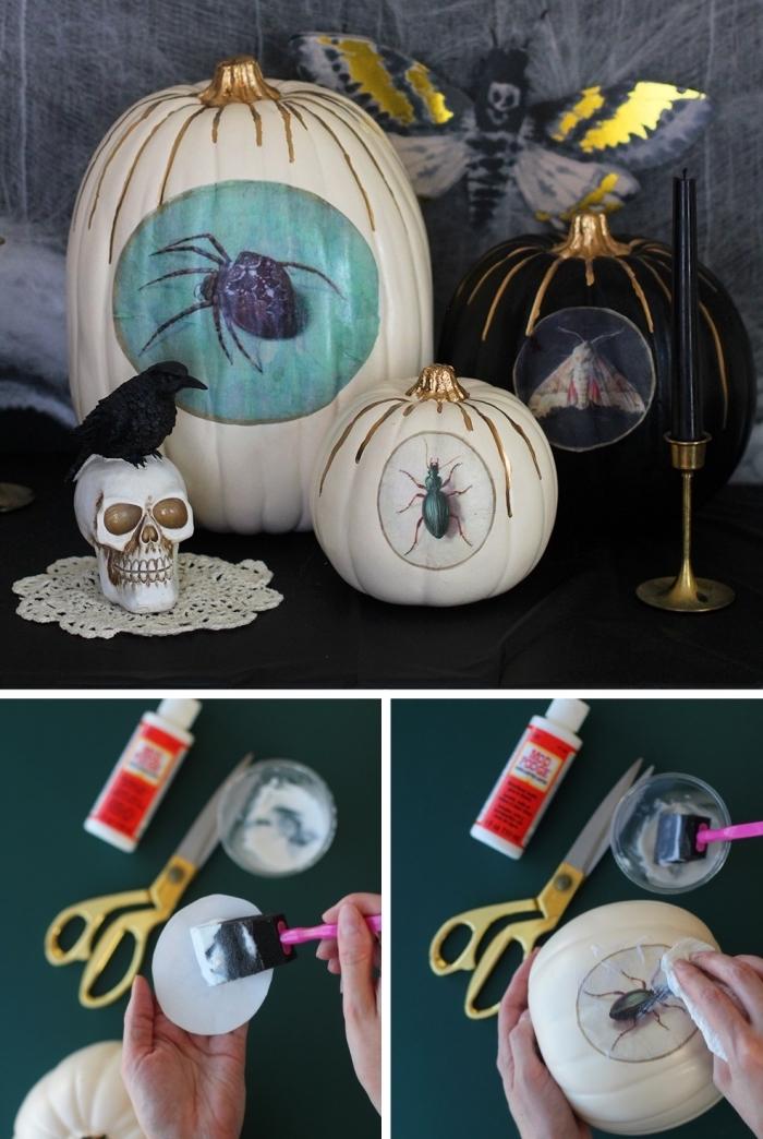 faire une citrouille d halloween facile avec la technique de découpage, collez des images sur une citrouille avec mod podge