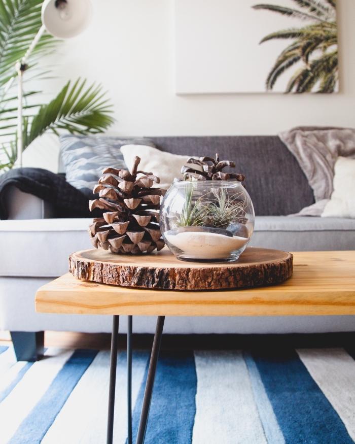 déco cozy et minimaliste dans un salon aménagé avec canapé et décoré avec plantes vertes et objets diy, pomme de pin deco