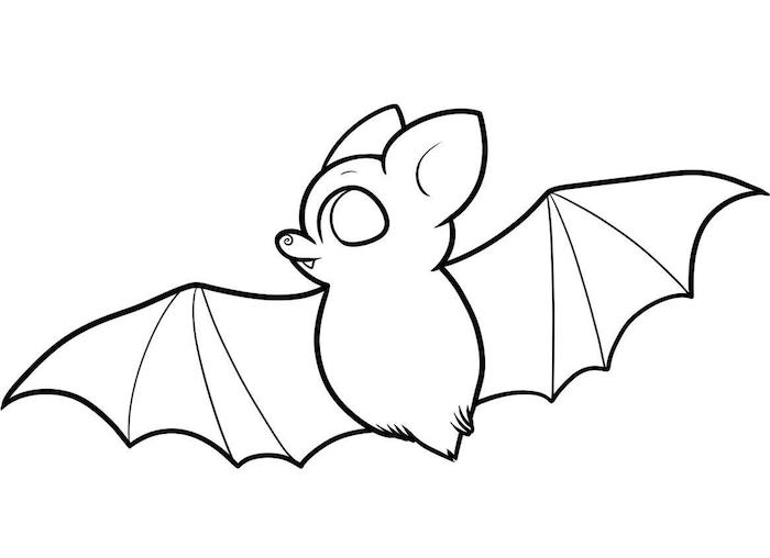 dessin de chauve souris bebe facile pour coloriage halloween enfant