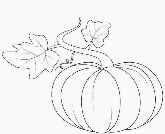 modele de dessin citrouille facile à imprimer pour décoration halloween pour enfant