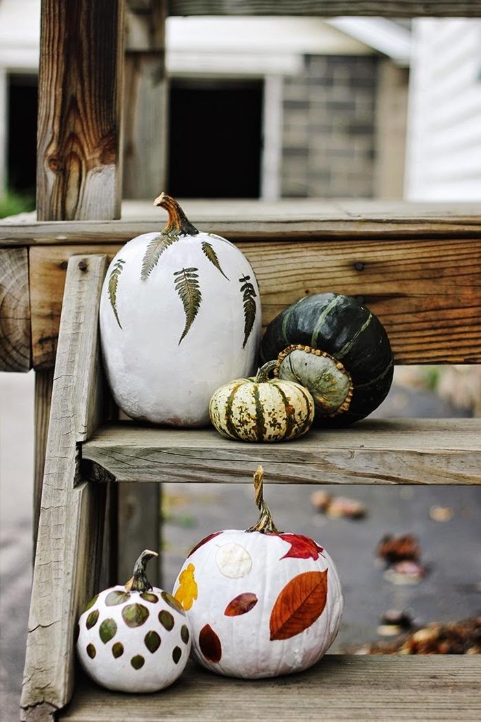 idée pour une activité manuelle d'automne facile, modèle de citrouille blanche décorée avec feuilles séchées