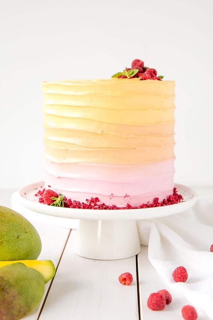 idée pour un gâteau tropical à la mangue et framboise, au glaçage de crème au beurre et meringue suisse