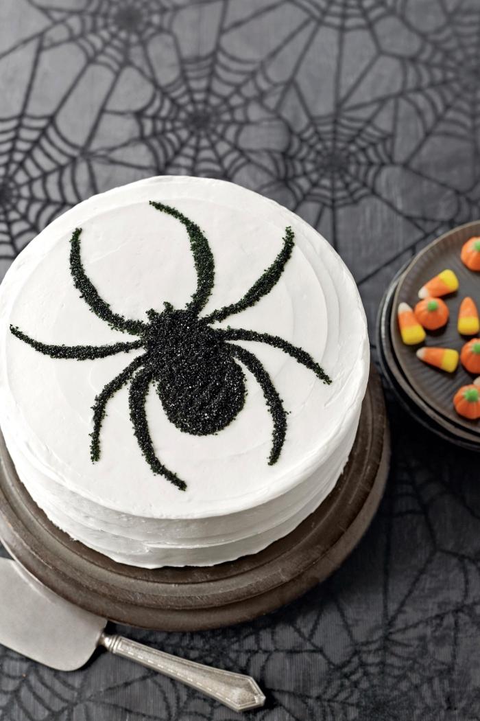 modèle de gateau araignée stylé au glaçage à vanille avec jolie décoration élégante à design insecte en sucre noir