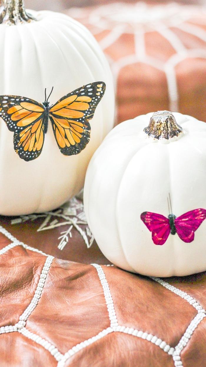 exemple de citrouille blanche décorée avec image à design papillon, idée de décoration citrouille facile avec Mod podge et photo
