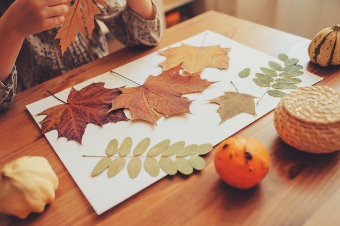 creation land art facile a faire, feuilles mortes et branches collées sur du papier, activité manuelle maternelle automne