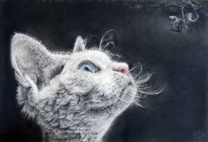 Crayon fusain dessins animal fusain, dessin noir et blanc difficile a reproduire, chat adorable dessin au fusain blanc, chaton mignon avec yeux bleus