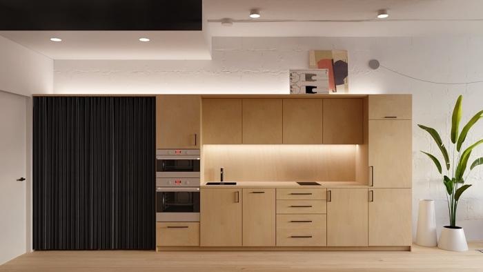creer sa cuisine moderne en style contemporain et à design épuré avec armoires en bois et peinture murale blanche