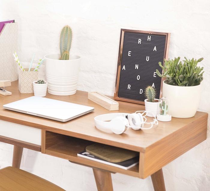idee de deco coin vert bureau avec des cactus et succulents de tailles diverses plantées en pots blancs, bureau et chaise bois