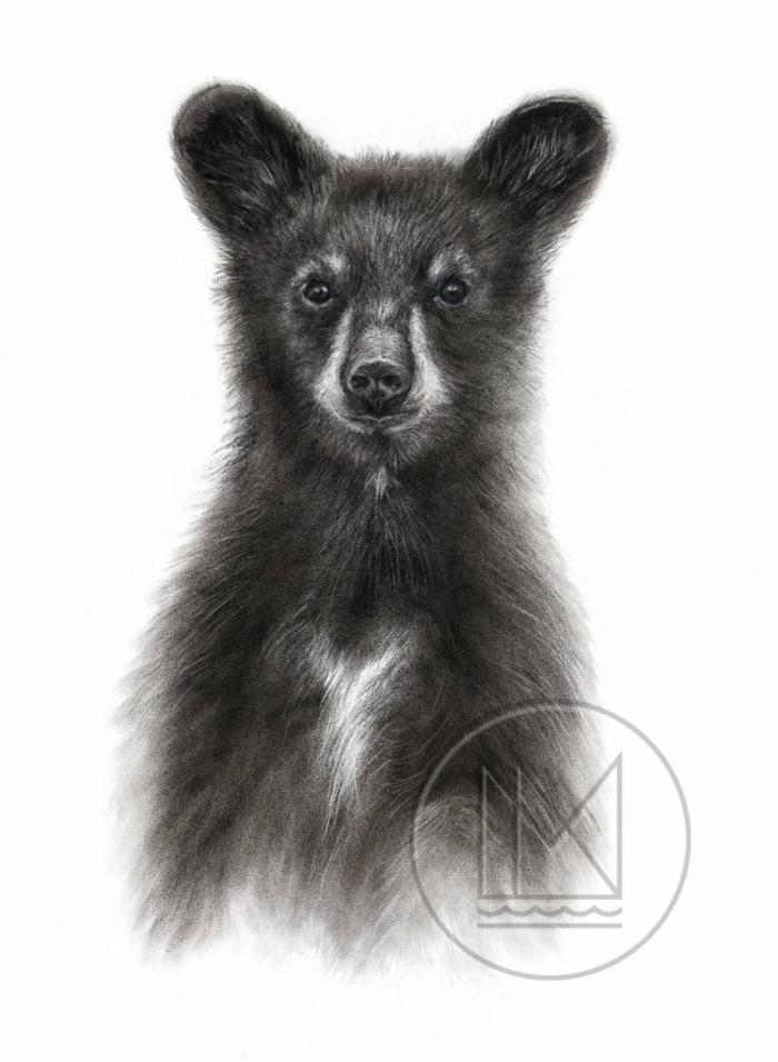 Dessin noir et blanc difficile, ourson avec tout ses détails, réproduir un dessin esquisse, animaux de la foret dessins