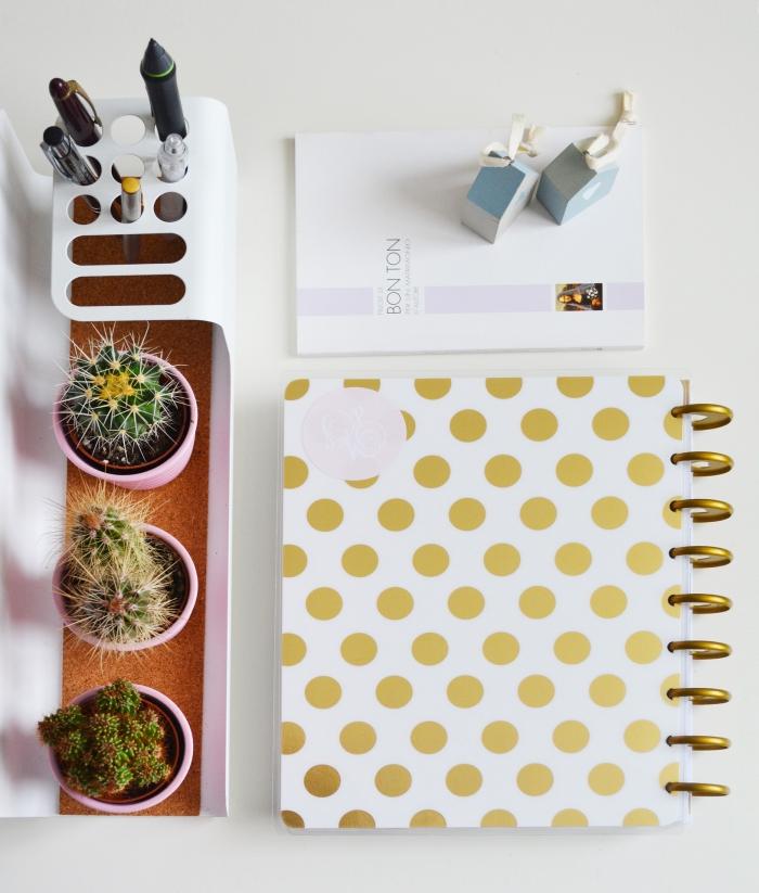 jolie rangement d'un bureau épuré avec un porte-stylos fonctionnel et esthétique, et de petites décorations de pots de succulentes