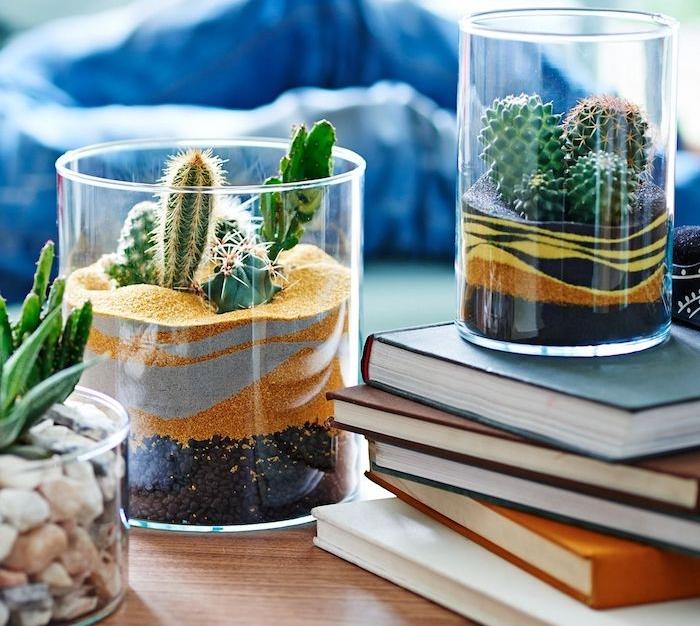 plante grasse d intérieur et cactus en pot récipient de verre avec du terreau, sable coloré et gravier, plante d intérieur originale