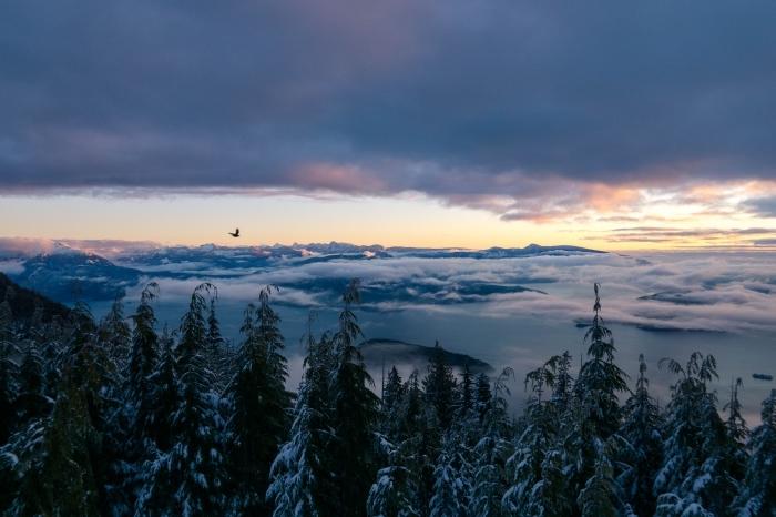 magnifique photo de coucher du soleil en hiver, image vol d'un oiseau au-dessus des sommets enneigés et un ciel nuageux