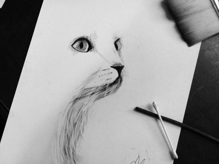 Simple dessin de chat blanche, essayer à dessiner au fusain, quels sont les techniques à essayer, astuce baton d'oreilles