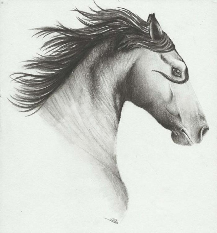 Dessin pour debutant cheval, dessin noir et blanc facile, technique pas a pas, choisir de dessiner un cheval avec tout ses details