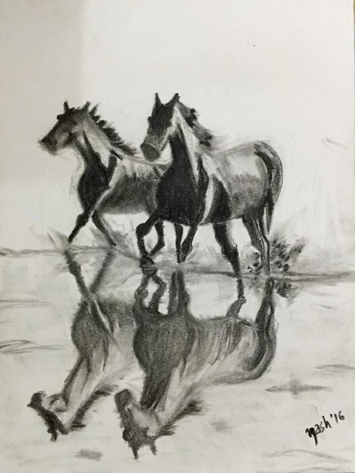 Crayon fusain dessin pour debutant, dessin a faire au fausin, maitrise de l'art au fusain, deux chevaux libres