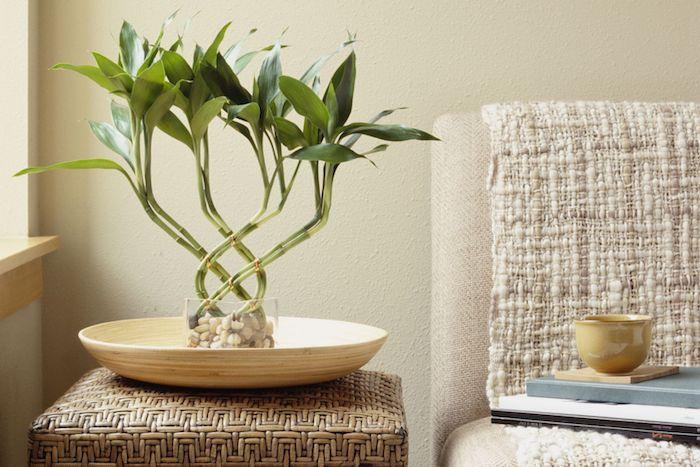 idee deco salon en gris avec un bambou planté dans pot en verre dans assiette bois sur une table de service