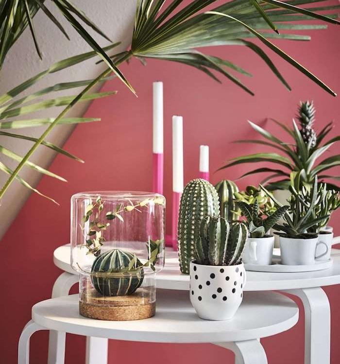 deco originale coin verdure sur de tables basse gigognes, plante grasse intérieur et cactus sur fond rose