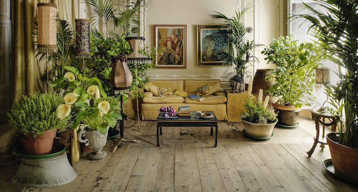 salon décoré en style vintage, canapé jaune vintage, parquet bois brut, deco mur de cadres art, plusieurs de grande plante interieur