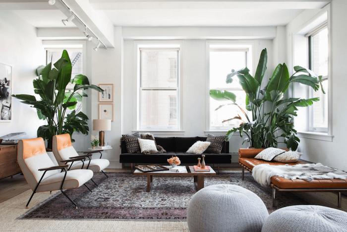 deco salon moderne avec grande plante interieur en pot, canapé gris foncé, canapé lit cuir marron, table basse bois, chaises blanc et marron, tapis oriental