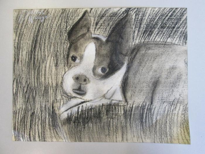 Dessin a dessiner pour les debutants au fusain, dessin facile a dessiner, video tutoriels de chien simple