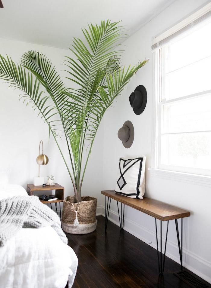 grande plante interieur, palmier dans un cache pot de panier rotin, chambre à coucher moderne, banc bois et metal, linge de lit blanc et gris, chapeaux rangés sur mur blanc