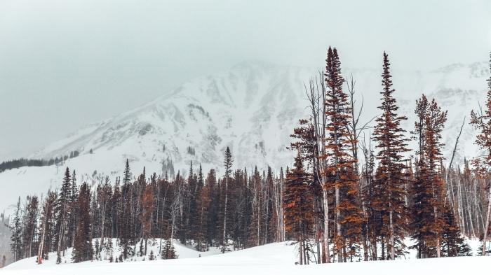 joli fond d écran hiver, exemple photo gratuite pour pc, wallpaper hiver dans les montagnes, photo sommets enneigés
