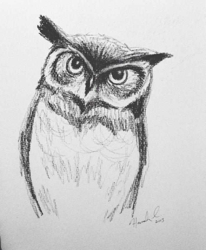 Dessin au fusain hibou qui te regarde, dessins fusain simple, comment dessiner comme un artiste
