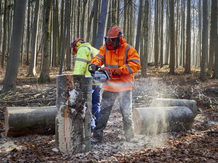 travail en pleine nature, deux hommes qui exercent un nettoyage de la forêt, vêtement de travail