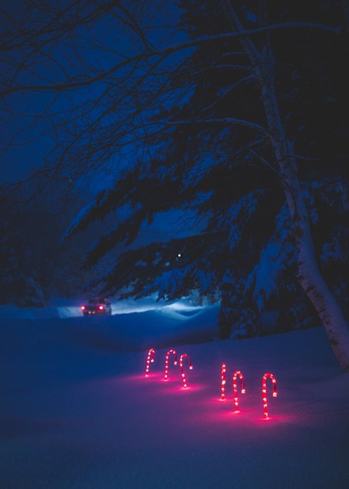 exemple paysage de noel pour wallpaper verrouillage portable, photo de paysage enneigé dans une forêt pendant la nuit