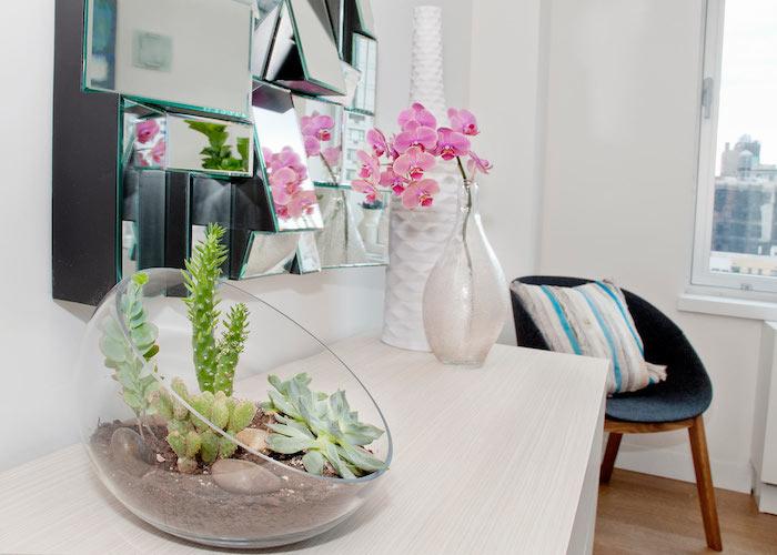 exemple de plante fleurie intérieur, orchidée couleur rose et un terrarium avec plante grasse intérieur et cactus