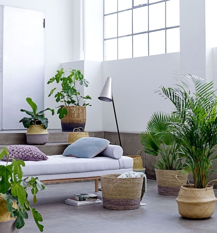 canapé lit en bois avec matelas gris clair et coussins décorarifs entouré de plantes exotiques en pot, palmiers et cache pot tressé